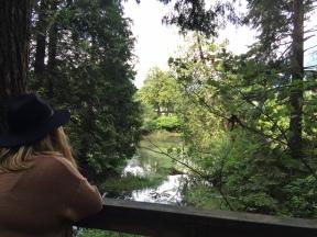 Enjoying the views